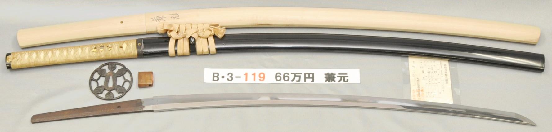 B3119