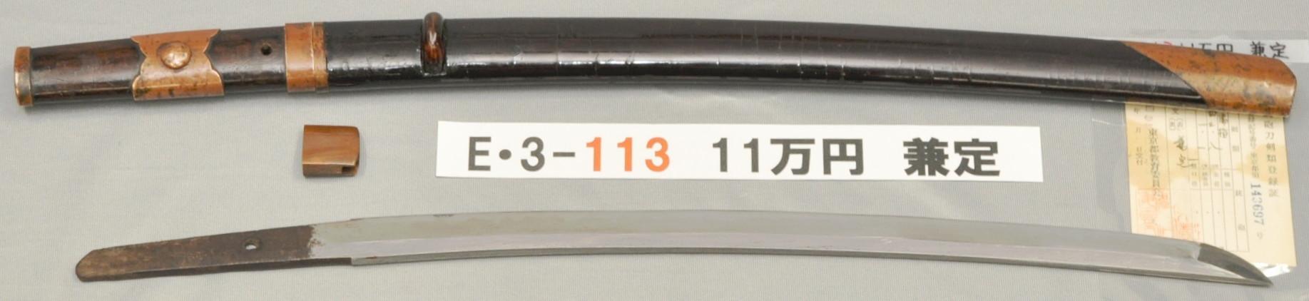 E3113