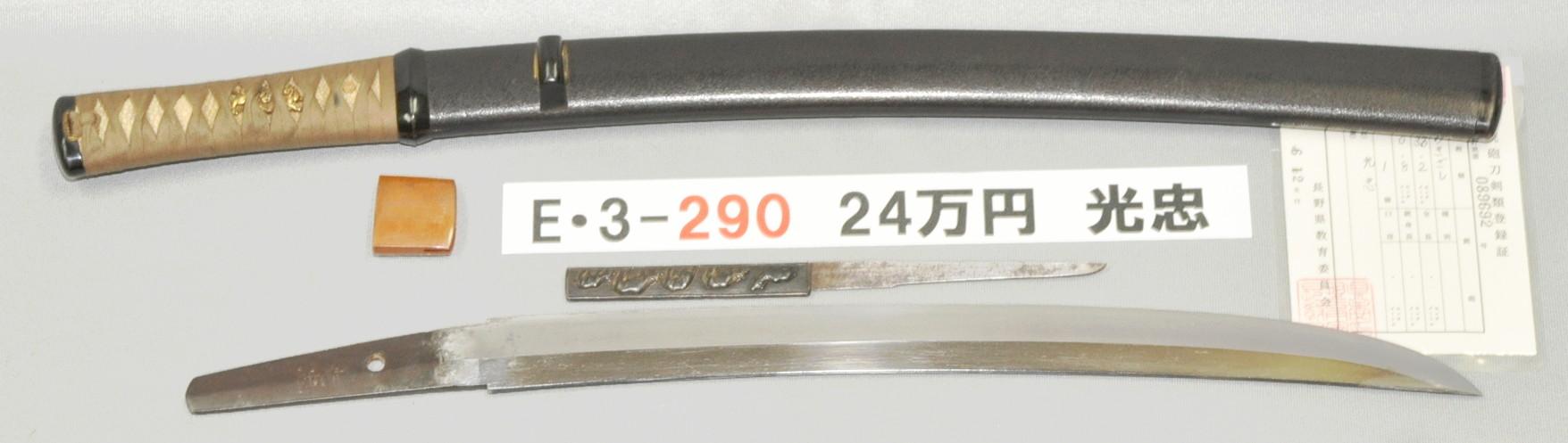 E3290